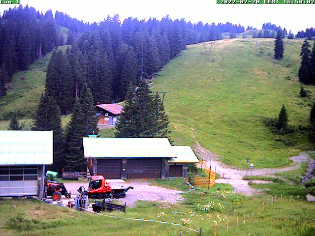 Webcam Grasgehrenlift