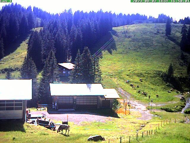 Webcam Skigebiet Grasgehren - Bolgengrat Allgäu